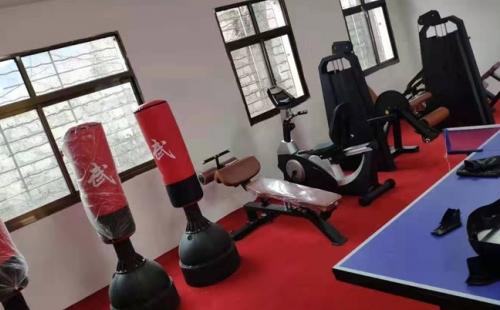 西藏林芝地区米林县丹娘乡政府健身房