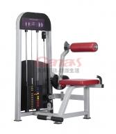 MT-6008 腰背肌训练器